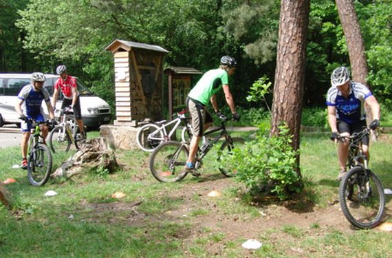 Mountainbike Kurs Basic